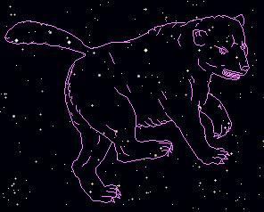ursa.major.bear